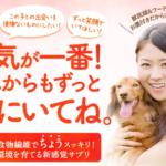 乳酸菌サプリ【いぬファイン】は愛犬の腸活に効果は?実際に試してみた口コミ・評価